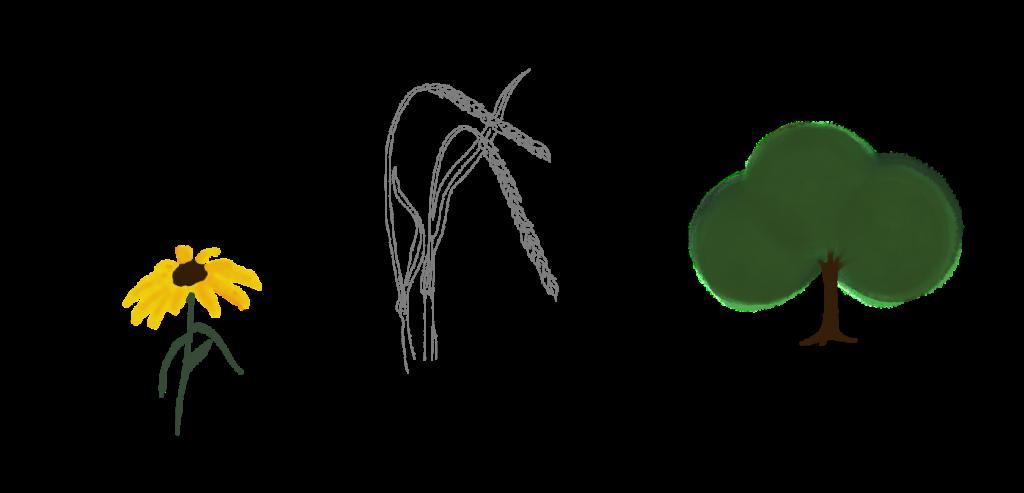 Blume, Weizenfeld und Baum illustriert von hejhej