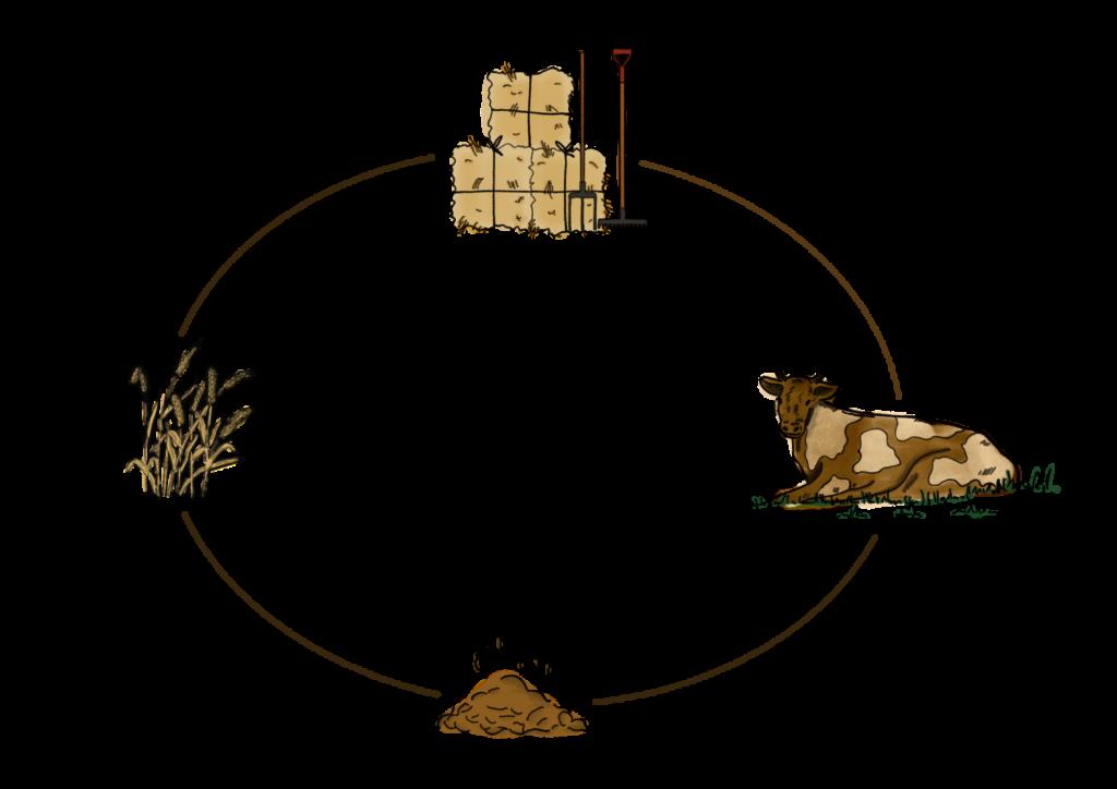 der Kreislauf auf einem Biobauernhof gezeichnet von hejhej
